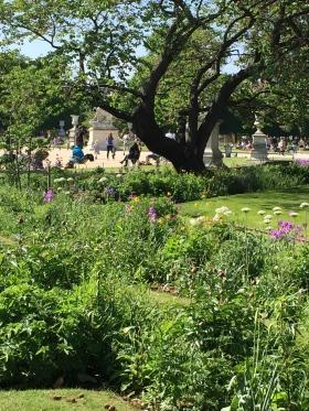 Le printemps dans le Jardin des Tuileries